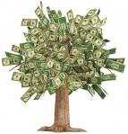 Money; Savings; Green; Tree; Moneytree