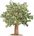 Money; Savings; Green; Tree; Moneytree